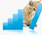 Cats love bar charts.