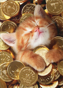07 - Probably COINS